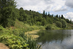 Pezazh de l'eau, été Images stock