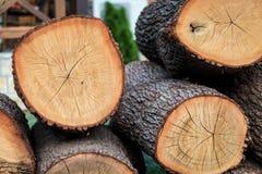 Pezzi della legna da ardere cutted grande giro Immagini Stock Libere da Diritti