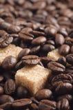 Pezzi dello zucchero di canna coperti dai chicchi di caffè arrostiti Immagini Stock