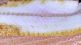 Pezzi di anguilla e di salmone archivi video
