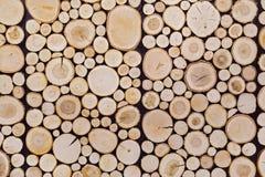 Pezzi di fondo di legno del ceppo del tek rotondo fotografia stock libera da diritti