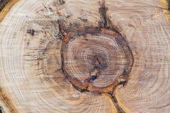 Pezzi di legna da ardere di spaccatura fotografia stock libera da diritti