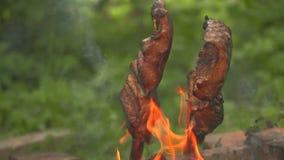 Pezzi di pesce su un fuoco aperto archivi video