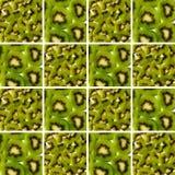 Pezzi e fette del kiwi dentro le forme quadrate Immagini Stock