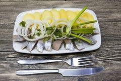 Pezzi saporiti di aringa islandese con le patate e le cipolle bollite sul piatto Fotografie Stock