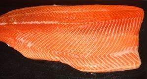 Pezzo del salmone del modello Fotografie Stock