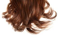 Pezzo di brevi capelli marroni castana isolati Immagini Stock