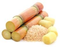 Pezzo di canna da zucchero con zucchero rosso immagini stock libere da diritti