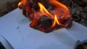 Pezzo di carta bruciante stock footage