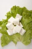 Pezzo di formaggio o di Paneer Fotografie Stock