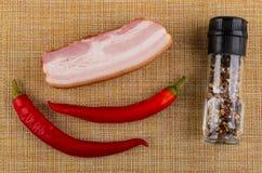 Pezzo di petto, peperoncini, condimento sulla stuoia Vista superiore immagini stock libere da diritti