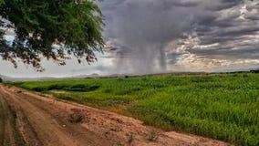 Pezzo di pioggia fotografia stock