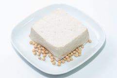 Pezzo di tofu Immagini Stock Libere da Diritti