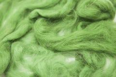 Pezzo di verde verde oliva di primo piano merino della razza della lana australiana delle pecore su un fondo bianco Immagini Stock Libere da Diritti