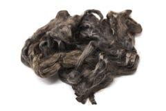 Pezzo grigio arsenico di primo piano merino della razza della lana australiana delle pecore su un fondo bianco Immagini Stock