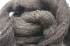 Pezzo grigio arsenico di primo piano merino della razza della lana australiana delle pecore su un fondo bianco Fotografia Stock Libera da Diritti