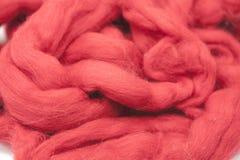 Pezzo rosso della ciliegia di primo piano australiano della razza dei Merinos della lana delle pecore su un fondo bianco Immagini Stock