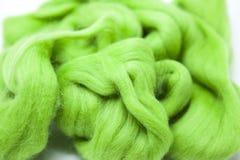 Pezzo verde del prato inglese di primo piano merino della razza della lana australiana delle pecore su un fondo bianco Immagini Stock Libere da Diritti