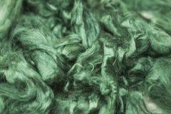 Pezzo verde dell'acquamarina di primo piano merino della razza della lana australiana delle pecore su un fondo bianco Fotografia Stock Libera da Diritti