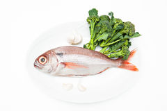 Pezzogna fish, variety of sea bream, with spice white background Royalty Free Stock Photography