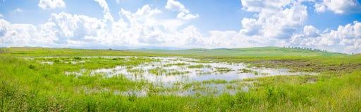 Pfütze in einem überschwemmten Ackerland Stockbilder