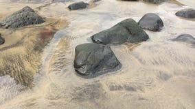 Pfützen im Strand stock footage