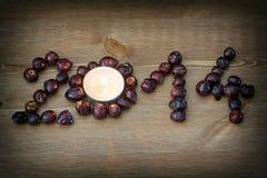PF 2014 сделал от плода шиповника с свечой чая Стоковое Изображение