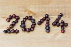 PF 2014 сделал от плода шиповника Стоковое Фото