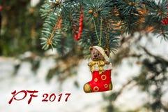 PF 2017年-玩具熊和红色袜子,在圣诞节的圣诞节玩具 图库摄影