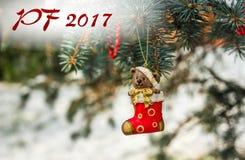 PF 2017年-玩具熊和红色袜子,在圣诞节的圣诞节玩具 免版税库存照片