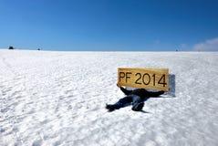 PF 2014 Immagine Stock Libera da Diritti