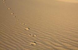 Pfad auf dem Sand Lizenzfreies Stockfoto