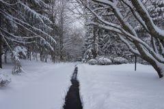 Pfad auf dem Schnee stockbilder