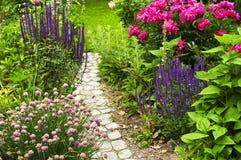 Pfad in blühendem Garten Stockbilder