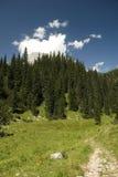 Pfad in den julianischen Alpen, Slowenien. Stockfotos