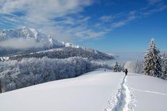 Pfad des Schnees Lizenzfreies Stockbild