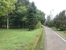 Pfad durch einen Park Stockbild