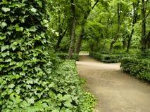 Pfad im königlichen Park - Warschau Stockfotos