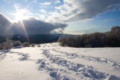 Pfad im Schnee. Stockfotos