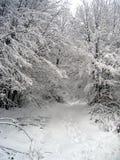 Pfad im Schnee Lizenzfreies Stockfoto