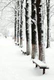 Pfad im Schneepark Lizenzfreies Stockbild