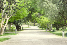 Pfad zum Garten Eden Stockbilder