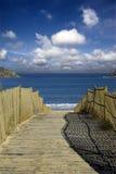 Pfad zum Strand Stockbilder