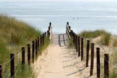 Pfad zum Strand stockfoto