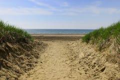 Pfad zum Strand lizenzfreies stockfoto