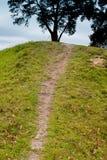 Pfad zur Oberseite des Hügels Lizenzfreie Stockbilder