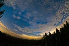 Pfalzgrevskapskog Fotografering för Bildbyråer