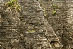 Pfannkuchenfelsen in Nationalpark Paparoa Stockbild