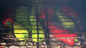 Pfeffer BBQ stock footage