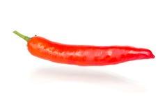Pfeffer der roten Paprikas Stockfoto